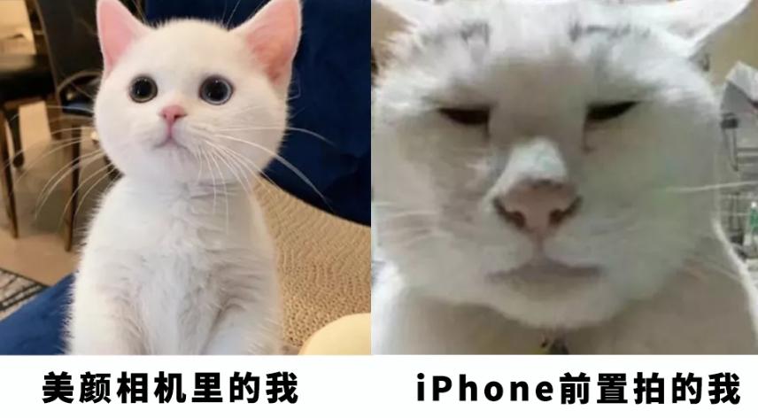 还能降!劝你别买iPhone13的11个理由~