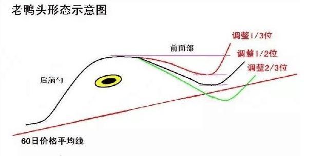 老鸭头形态图解(老鸭头一般涨幅是多少)