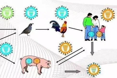 【北京疾控提醒您】五一假期健康提示 :人与动物保持距离,防范人兽共患病