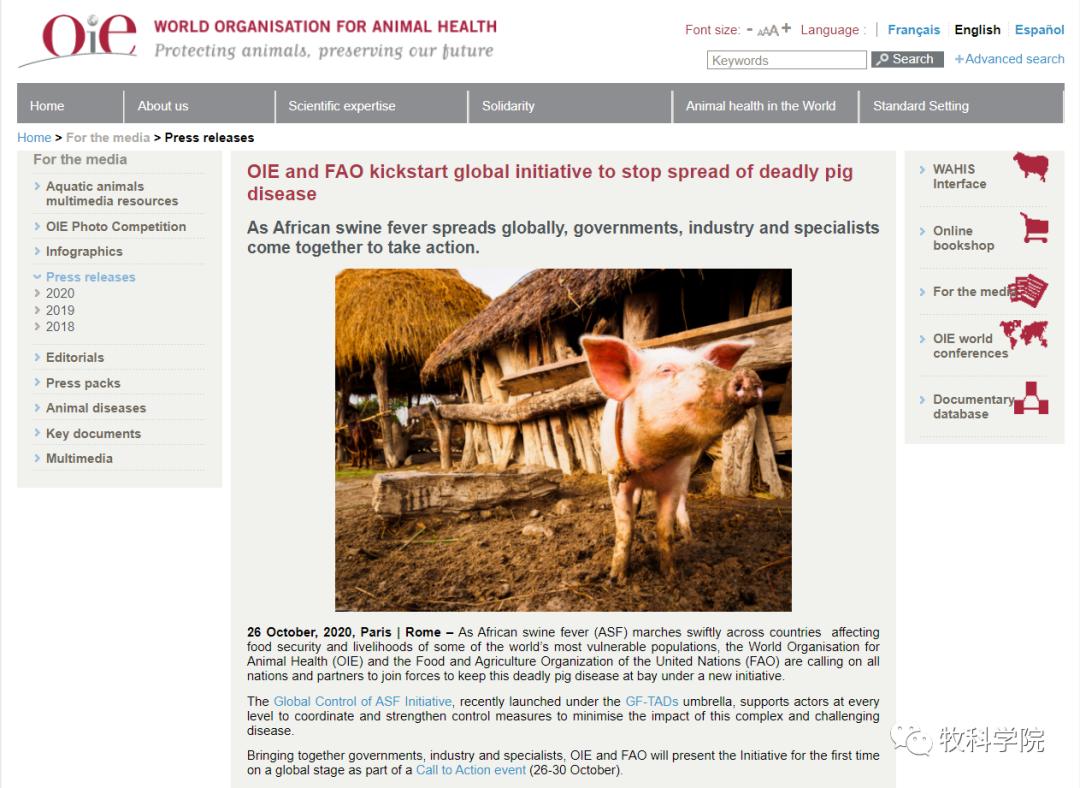 OIE与FAO发起全球倡议,呼吁共同遏制非洲猪瘟蔓延