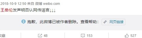 王岳伦就与女子举止亲密道歉:李湘未发声