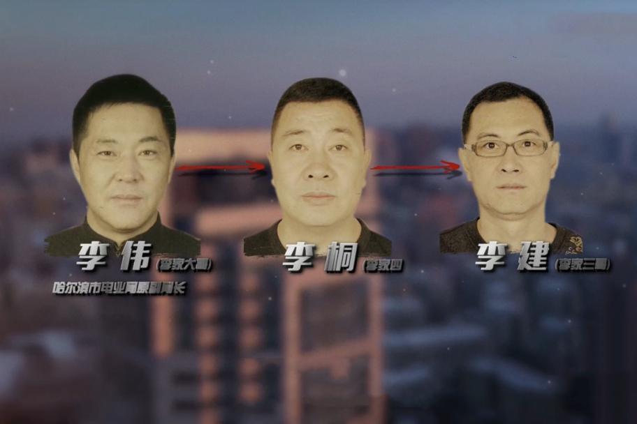 李氏三兄弟的消亡史:拥有豪车96辆,房产69套,存款近10亿