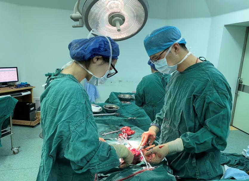 子宫肌瘤大如胎头,高超医术助宝妈顺利产子