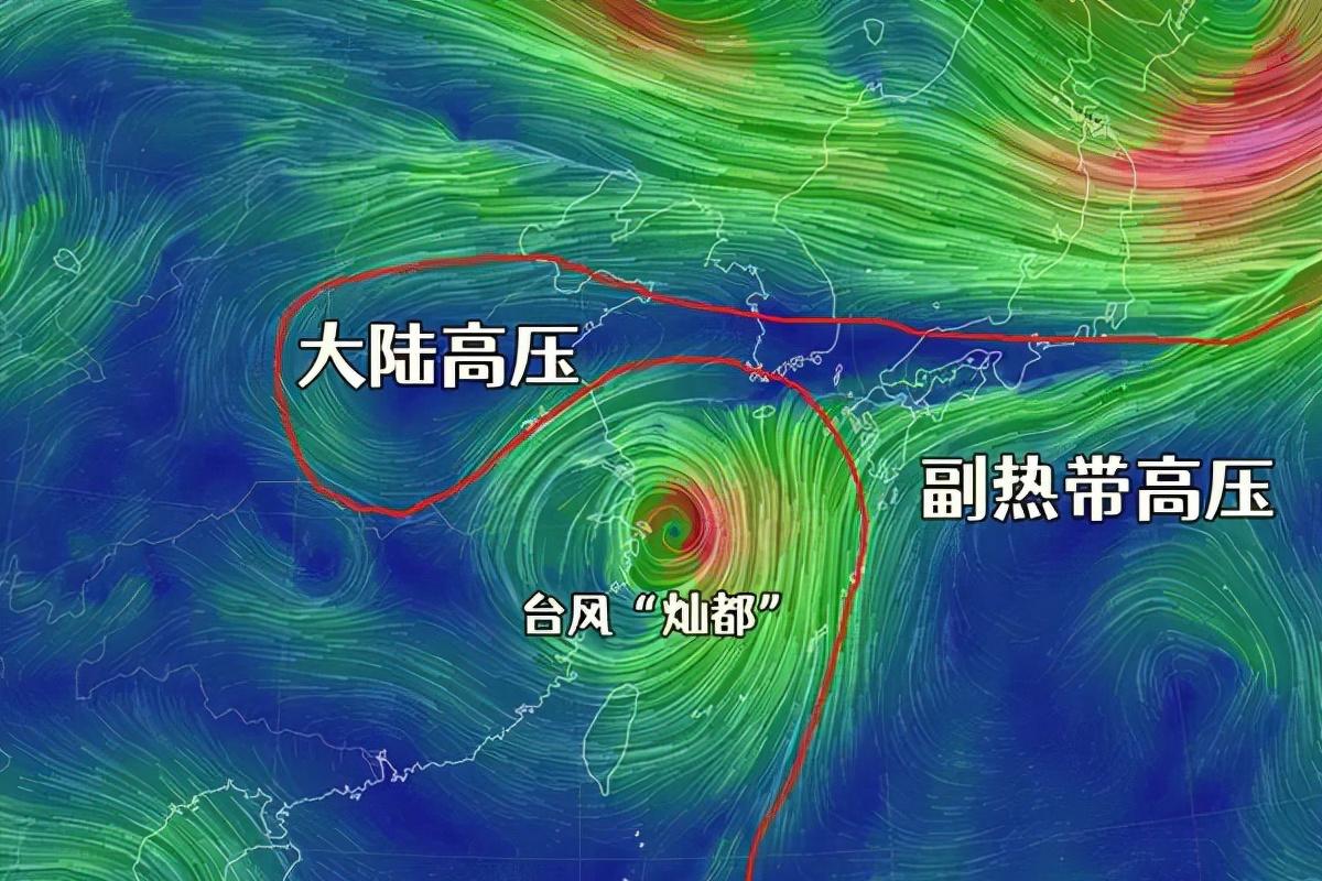 """风急雨骤坐等""""灿都""""拜拜!台风风王还在苏州附近转圈圈!"""