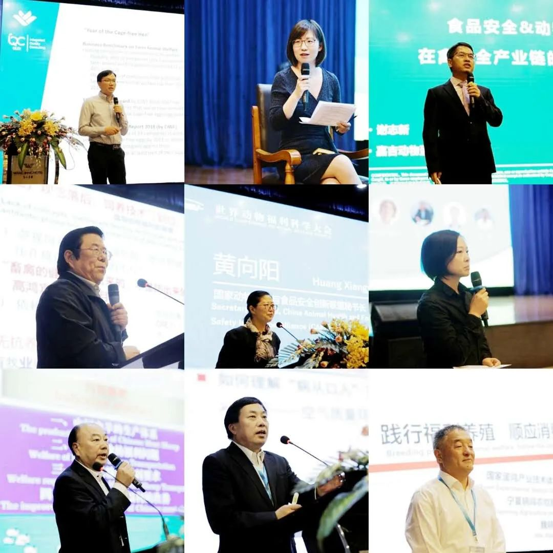 第二届世界动物福利科学大会暨第二届品质与福利鸡蛋(中国)高峰论坛