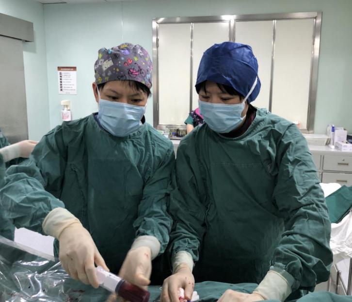 「弹丸」所至 心动永存——记同济大学附属同济医院第一例胶囊起搏器植入
