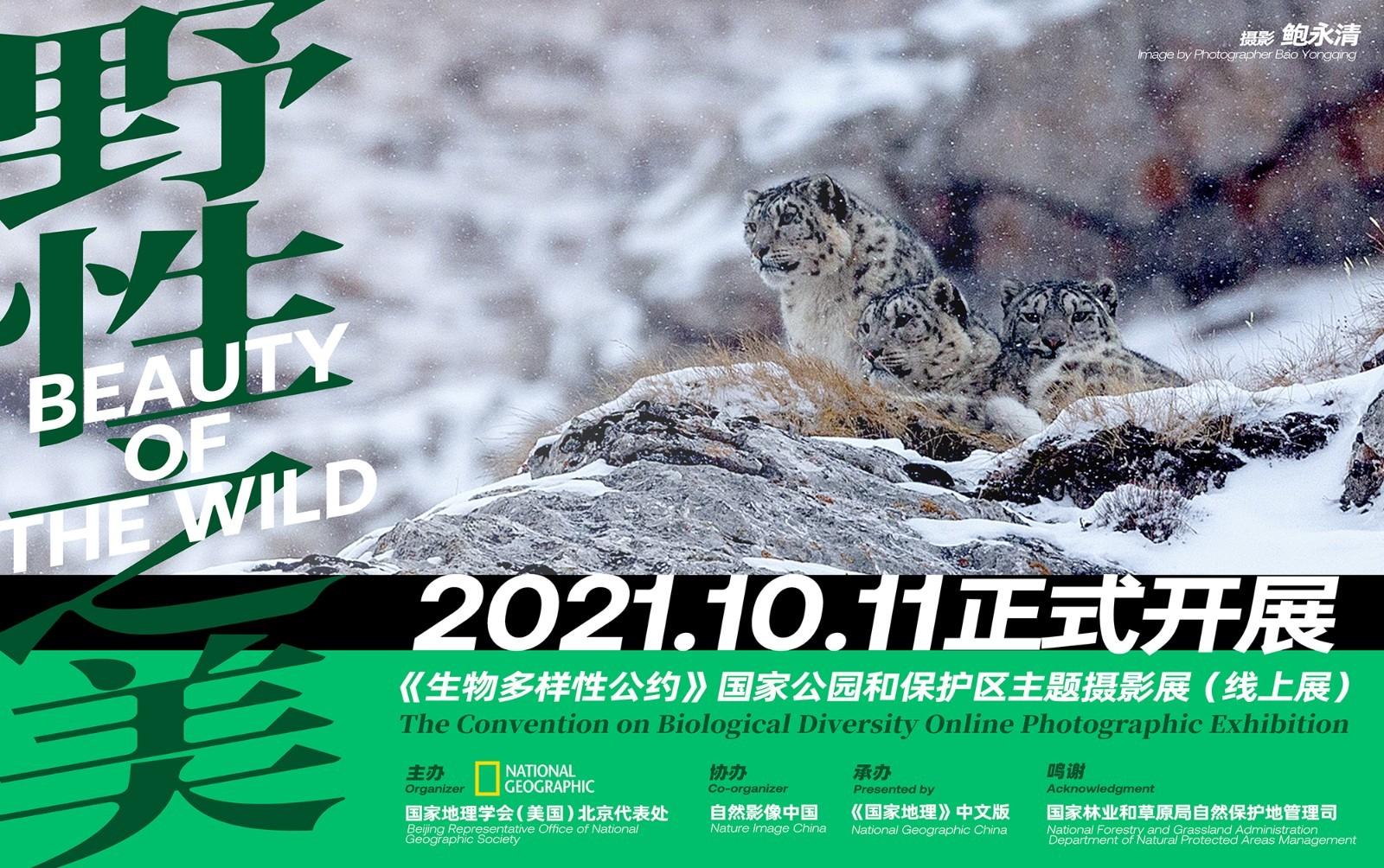 《野性之美》国家公园和保护区主题摄影展开幕
