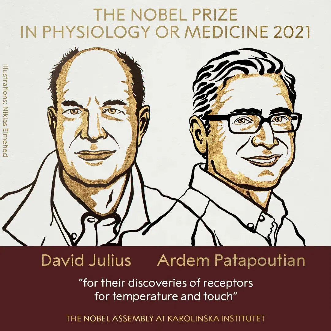 2021年诺贝尔生理学或医学奖获奖者揭晓