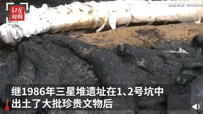 罕见!三星堆祭祀坑出土超120根象牙,由于长时间埋藏,此根象牙的重量比填埋时更重