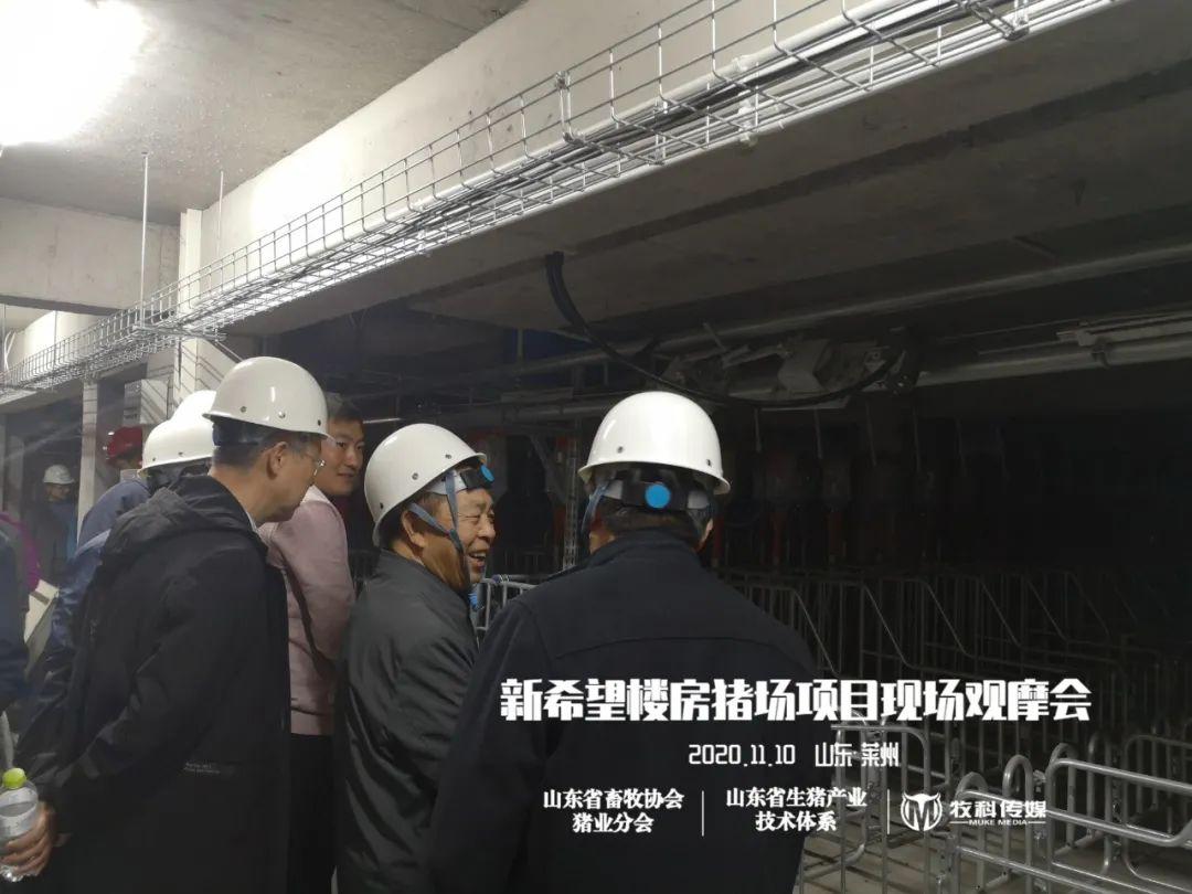 新希望六和|山东首个万头母猪楼房养猪项目即将投产