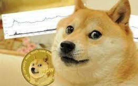 """1月暴涨10倍, 马斯克背书的狗狗币竟被列为""""传销币"""""""