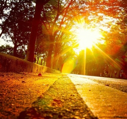 早安励志正能量的句子,选一句发朋友圈吧!第1张-励志朋友圈