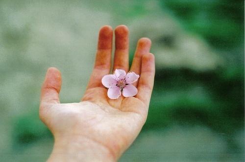 适合女人的正能量句子,阳光向上,激励人心!第3张-励志朋友圈