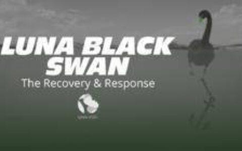 LUNA 黑天鹅事件:Terra CEO关于项目应急方案的社区AMA