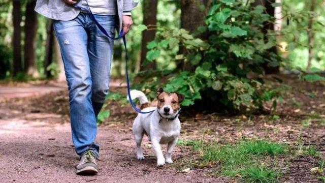 图像加注文字, 外出走路时也可以练习像走钢丝那样有利于改善平衡。