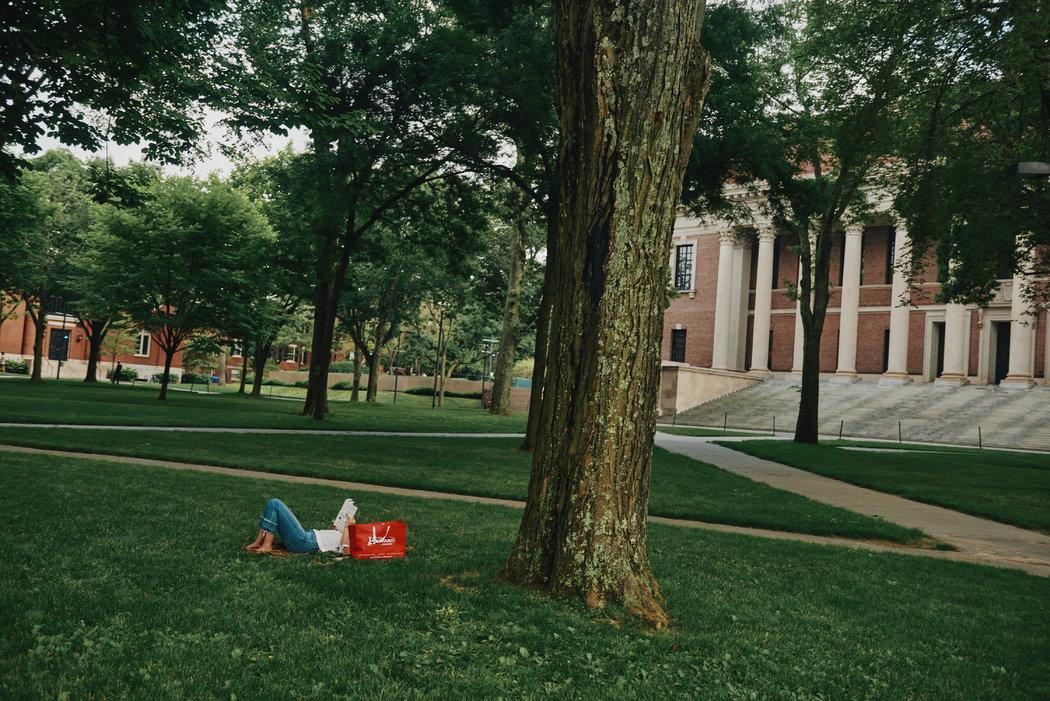7月,空荡荡的哈佛园。