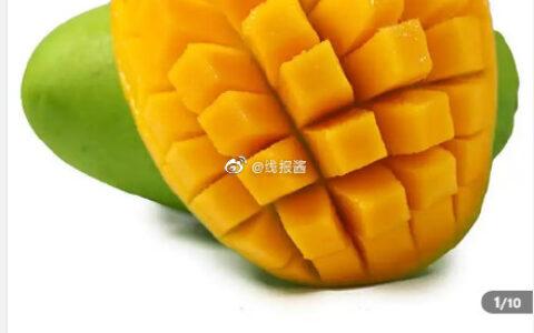 越南玉芒5斤装大果,拼团补贴【16.9】越南玉芒5斤装大