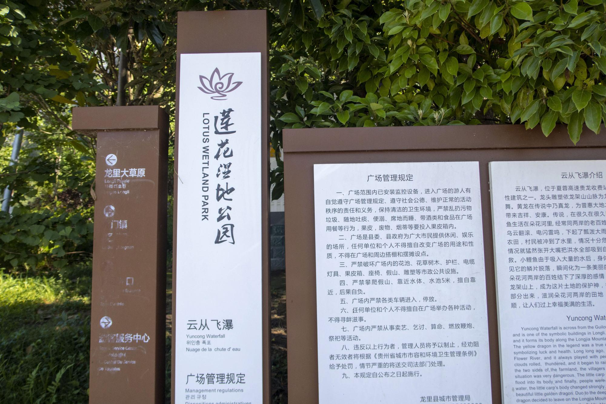 龙里莲花湿地公园