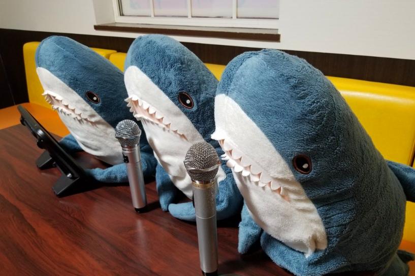 揭秘英国网友拯救宜家鲨鱼毛绒玩具活动?首相回应猪养圈里到圣诞