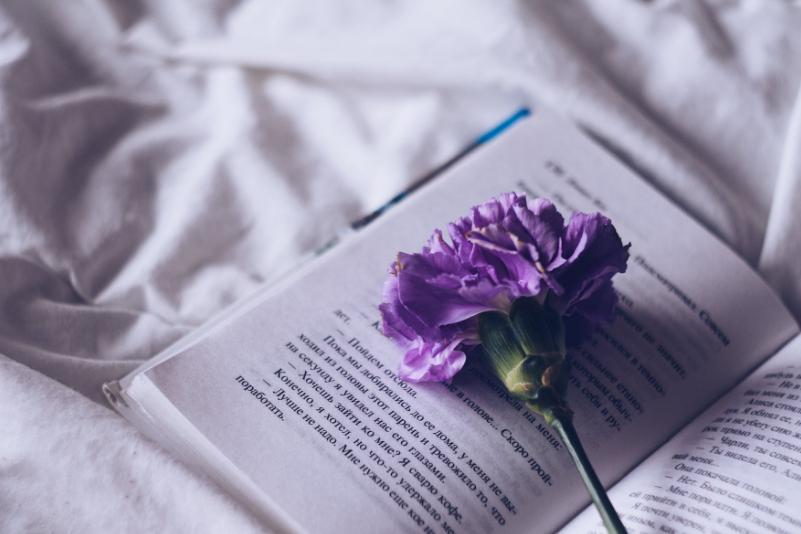 读万卷书 行万里路