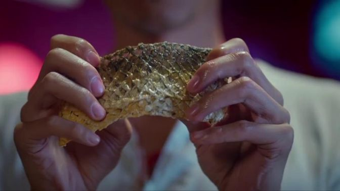 决战食神:看谢霆锋煎鱼太享受了,尤其是折断那一瞬间!