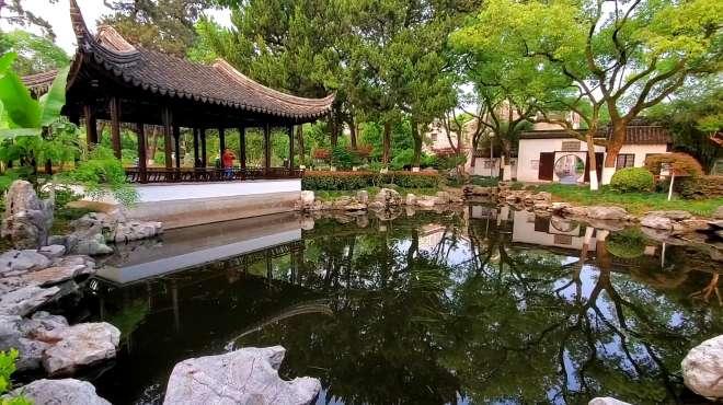 宁波市内最著名的公园,月湖公园,国家5A级景区