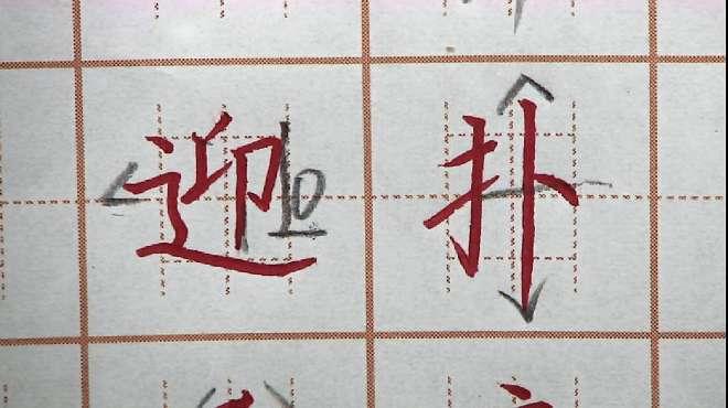 迎字走之儿书写是关键,扑字右边要写长,二年级生字硬笔书法练字