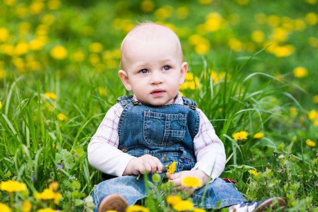 如何给2021牛年出生的宝宝们取一个心满意足的好名字呢?