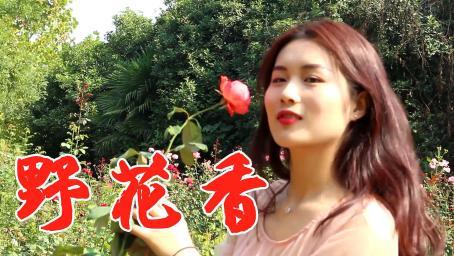 美女一首DJ情歌《野花香》,肉麻迷人,节奏动感,怎么听都不腻!