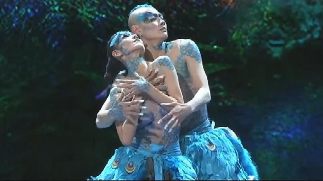 杨丽萍舞蹈《雀之恋》,这不仅仅只是一支舞蹈,更是一种艺术