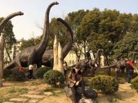 #我和春天有个约会#扬州古城旅游攻略