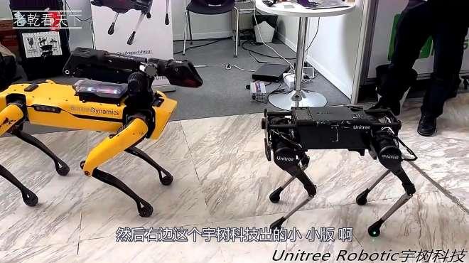 美国最先进的机器狗,碰上中国新款机器狗,谁更厉害呢?