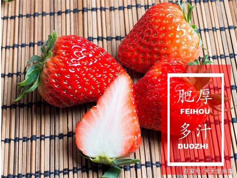 双流草莓新鲜红颜奶油巧克力草莓