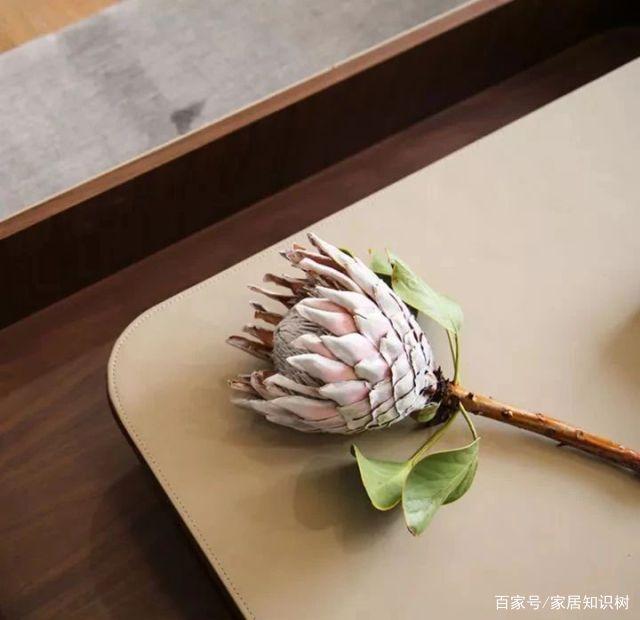 左手茶右手酒,他在深圳工作20年却在苏州找到生活归属